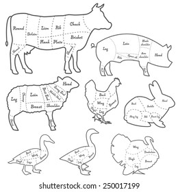 Vintage outline diagram meal cutting