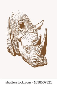 Vintage portrait of rhino , sepia background, vector illustration