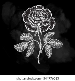 Vintage rose. Black and white graphics. Drawing with chalk on the chalkboard.