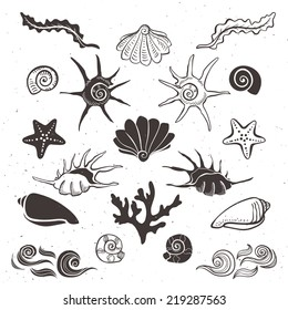 Vintage sea shells, starfish, seaweed, coral and waves. Hand drawn decorative elements on white background.