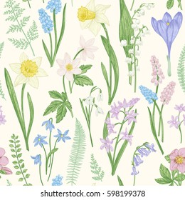 Vintage seamless floral pattern. Spring flowers and grass. Botanical vector illustration. Narcissus, lily of the valley, hellebore, snowdrop, crocus. Engraving. Pastel colors.