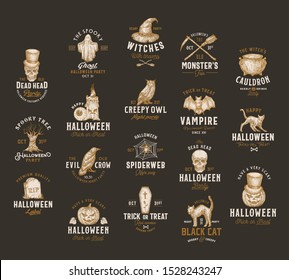 Vintage Style Halloween Logos or Labels Template Big Set. Hand Drawn Vampire Bat, Scull, Tomb, Cat, Hat, Owl, Pumpkin, Cauldron and Ghost Sketch Symbols Collection. Retro Typography. Dark Background.