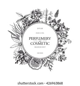 Vintage template. Ink hand drawn design with aromatic plants and  fruits isolated on white. Vector illustration with highly detailed perfumery and cosmetics ingredients