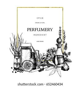 Vintage template. Ink hand drawn design with aromatic plants and fruits. Vector illustration with highly detailed perfumery and cosmetics ingredients sketch.