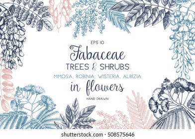 Vintage trees and shrubs in flowers illustration. Valentine's Day or Wedding design template on chalkboard. Vector greeting card with hand drawn wisteria, black locust, silver wattle, albizia sketch.
