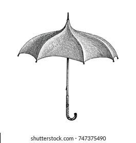 Vintage umbrella hand drawing engraving style
