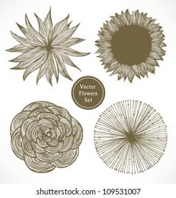 Vintage vector flowers set. Retro floral elements