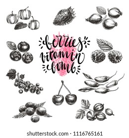 Vintage vector hand drawn berries sketch Illustrations set. Retro style objects collection with cherries, strauberry, bluberries and raspberries.