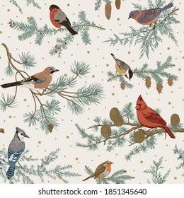 Vintage vector seamless pattern. Winter birds. Botanical illustrations. Tit, Robin, Jay, Blue jay, Bullfinch, Bluebird, Red cardinal