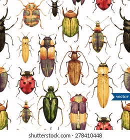 Vintage watercolor seamless pattern with beetles, white background