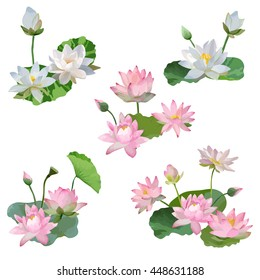 Vintage Waterlily Flowers Bouquet in Watercolor Style. Vector Set
