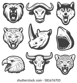 Vintage wild animals set with bear buffalo wolf panther rhino shark eagle bull tiger heads isolated vector illustration