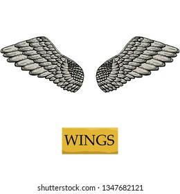Vintage wings of angel or eagle , or dove or bird. Gothic style.