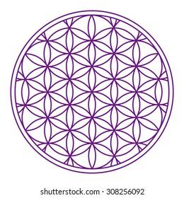 Violet flower of life esoteric symbol ornament