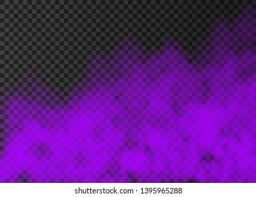 Violet smoke  isolated on transparent background.  Steam special effect.  Realistic  colorful vector fire fog  or mist texture.