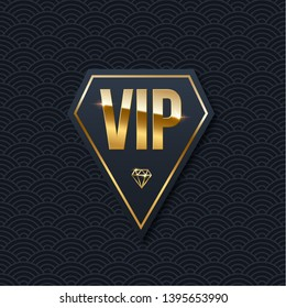 VIP club invitation vector template. Luxury 3d logo with golden gradient frame. Privilege, premium membership card design idea. Realistic private club emblem on glamorous background