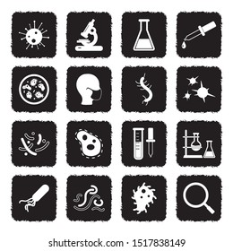 Virus And Bacteria Icons. Grunge Black Flat Design. Vector Illustration.