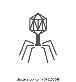 virus. bacteriophage