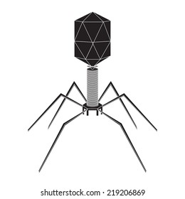 Virus bacteriophage model on a white background. Vector illustration.