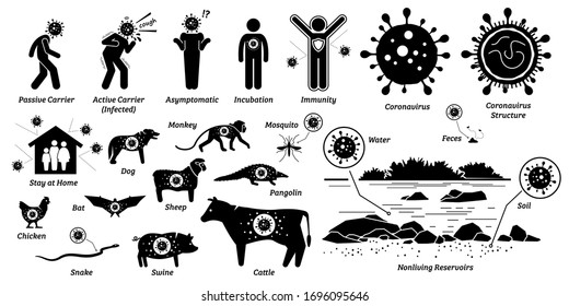 Virus infection disease on living and nonliving organisms. Vector illustrations of infected human and animals by flu, influenza, and virus. Human and animal are host and carrier of the coronavirus.