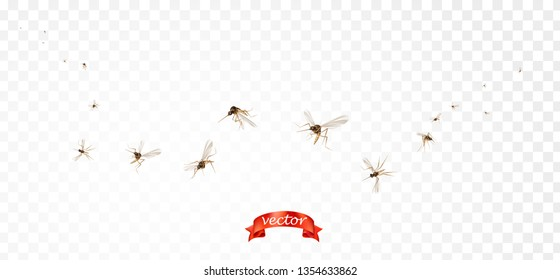 Viruses and diseases spreading medical vector concept. Flying mosquitoes flock in air isolated promo. Insect mosquito, gnat and pest illustration for repellent oil, spray and patches ads, poster, sign