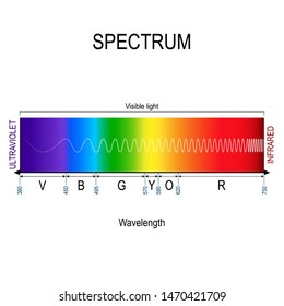 Visible spectrum color. infographic of sunlight color. In order of increasing frequency and decreasing wavelength. Range of spectrum from 350 to 750 nanometer. Vector illustration