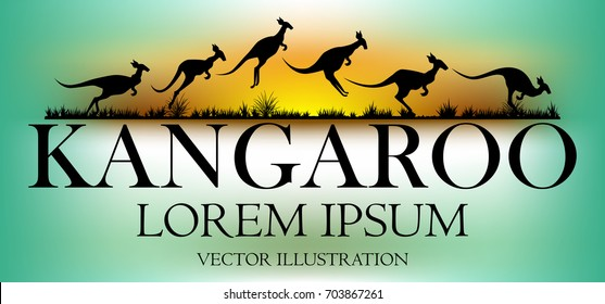 Visual drawing of kangaroo text design and silhouette of kangaroo in australia safari landscape with wildlife and sunset background for vector illustration