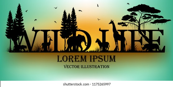 Visual drawing of wild life text design and silhouette of animal in Africa landscape with wildlife and aurora background for vector illustration