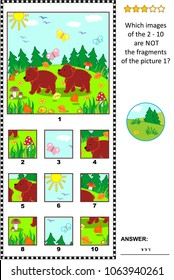 Visual logic puzzle with two little brown bears in the forest: Which images of the 2 - 10 are NOT the fragments of the picture 1?