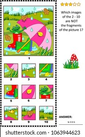 Visual logic puzzle with umbrella, gumboots and happy frog outdoor at rainy summer or autumn day: Which images of the 2 - 10 are NOT the fragments of the picture 1?
