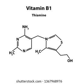 Vitamin B1. Thiamine Molecular chemical formula. Infographics. Vector illustration on isolated background.