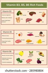 Vitamin B3, B5, B6 rich foods set infographics illustration, vector