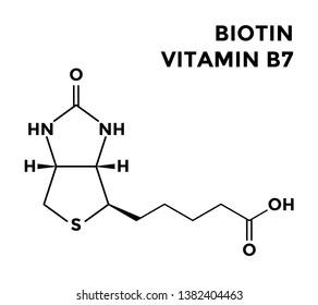 Vitamin B7 - biotin, structural chemical formula on white background