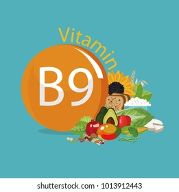 Vitamin B9 (folate). Food sources. Natural organic products with the maximum vitamin content.