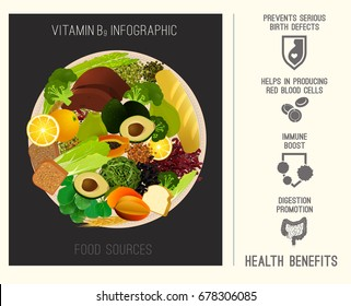 Vitamin B9 in food. Beautiful vector illustration in modern style on a dark grey background. Top foods highest in folate with health benefits infographic. Poster, leaflet or print layout template.
