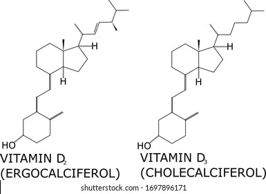 Vitamin D2 and D3 molecular structure vector. Helps calcium absorption on the bones, and is important in muscles, nerves and the immune system. Present in fish, animal liver and cheese