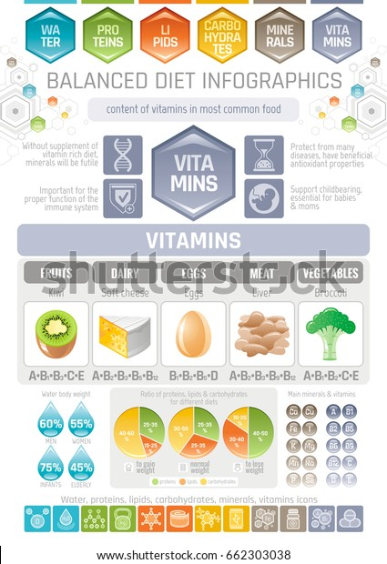 Vitamins Diet Infographic Diagram Poster Water Stock Vector Royalty Free 662303038
