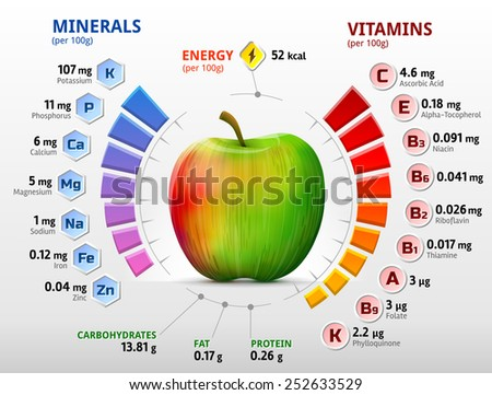 vitamins minerals apple infographics about nutrients のベクター画像