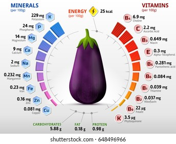 Vitamins and minerals of eggplant fruit. Infographics about nutrients in raw aubergine. Best vector illustration for agriculture, veggies, vitamins, health food, nutrients, diet, etc