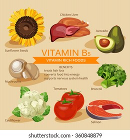 Vitamins and Minerals foods Illustration. Vector set of vitamin rich foods. Vitamin B5. Broccoli, chicken liver, avocado, sunflower seeds, cauliflower, tomatoes, mushrooms, salmon