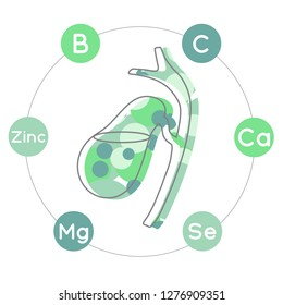 Vitamins and minerals for healthy gallbladder. Micro and macro elements and vitamins: B, C, Ca, Zinc, Mg, Se and other vector elements. Abstract illustration in green colors.