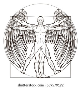 Vitruvian man angel figure like Leonard Da Vinci s anatomy illustration with wings