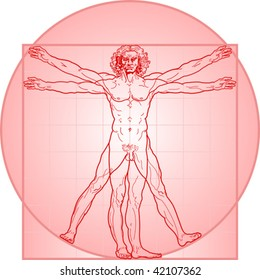 The Vitruvian man, or so called Leonardo da Vinci man. Detailed drawing. In Red.