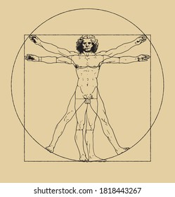 Vitruvian Man drawing by Leonardo da Vici. Clean vector illustration of famous drawing. Vintage scheme of proportions of human body.
