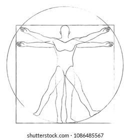 Vitruvian man drawing vector illustration