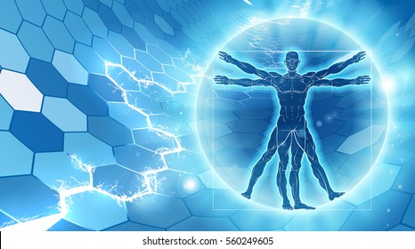 Vitruvian man hexagon blue background concept like Leonard Da Vinci s anatomy illustration
