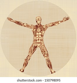 The Vitruvian Man. Remake of Leonardo da Vinci's drawing. Version 1.0