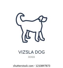 Vizsla dog icon. Vizsla dog linear symbol design from Dogs collection. Simple outline element vector illustration on white background.