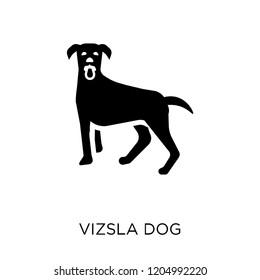 Vizsla dog icon. Vizsla dog symbol design from Dogs collection. Simple element vector illustration on white background.