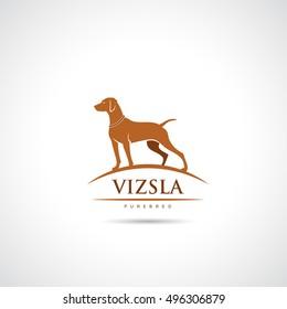 Vizsla dog symbol - vector illustration